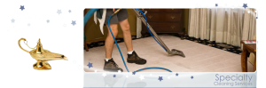 Specialty cleaning services in Toledo Ohio