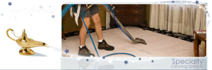 Toledo Ohio specialty cleaning service