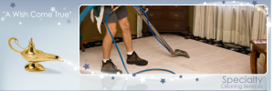 Specialty Cleaning Services for Toledo Home Owners and Businesses